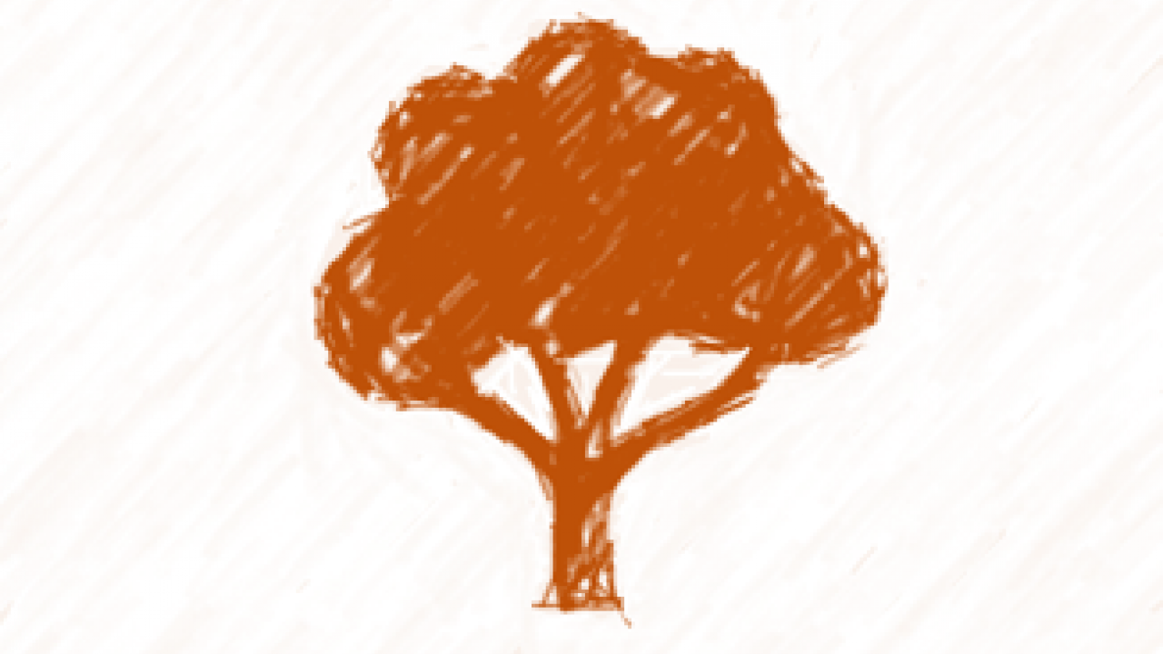 Website Icon Lead Free Tree